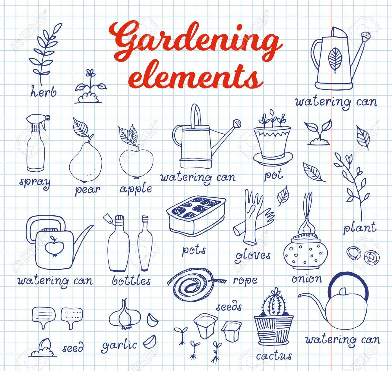Les Outils De Jardinage Avec Photos jardinage, ensemble de vecteur de l'horticulture, équipement et outils,  légumes et plantes sur fond d'ordinateur portable avec texte et noms