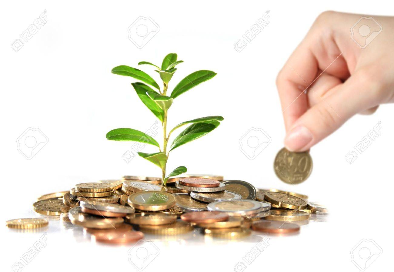Money and plant. Hand holding euro coin. Standard-Bild - 4874826