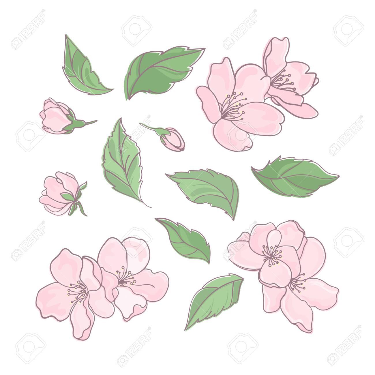 Clip Art Flowers Spring Nature