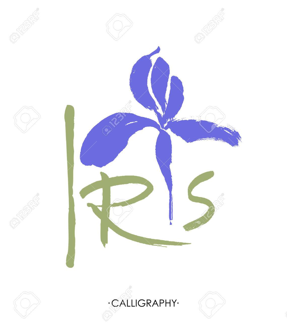 Vector flower logo. Floral background. Stylized calligraphic ink iris. - 76785514