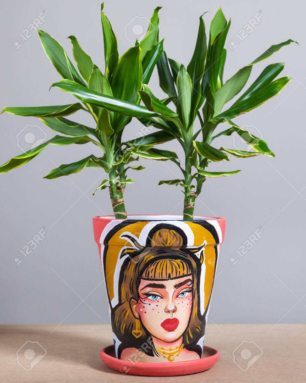 Dracaena Fragrans In The Colorful Hand Painted Plant Pot Woman Stock Photo Picture And Royalty Free Image Image 151364634