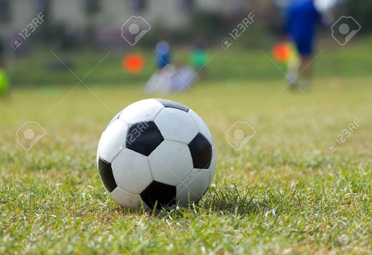 Soccer ball on the green grass - 48795529