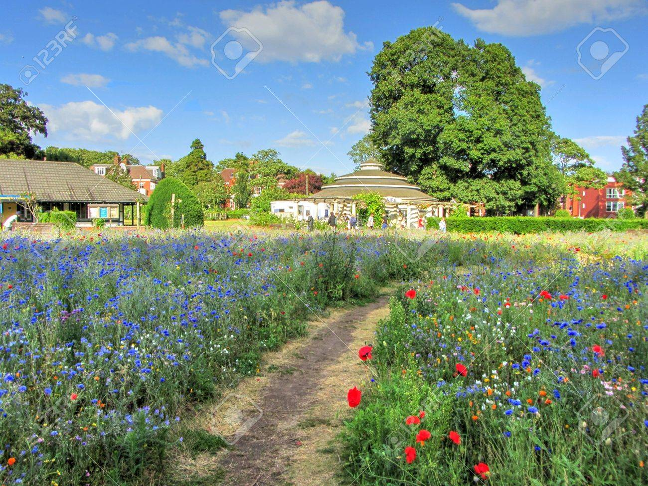 The Wildflower Garden, Preston Park, Brighton, East Sussex, England ...