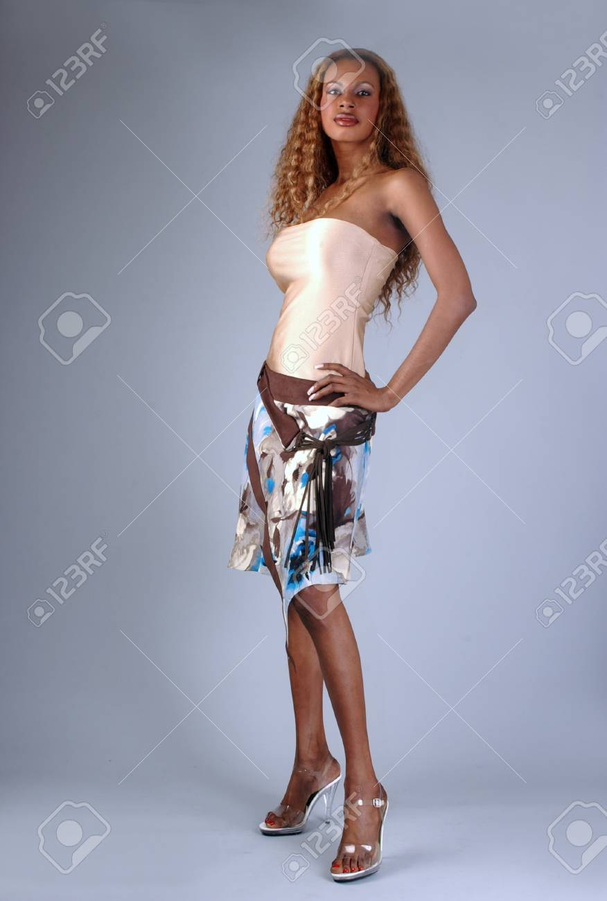 3d41295f8d3 Beautiful African American model posing wearing fashionable dresses Stock  Photo - 18394816