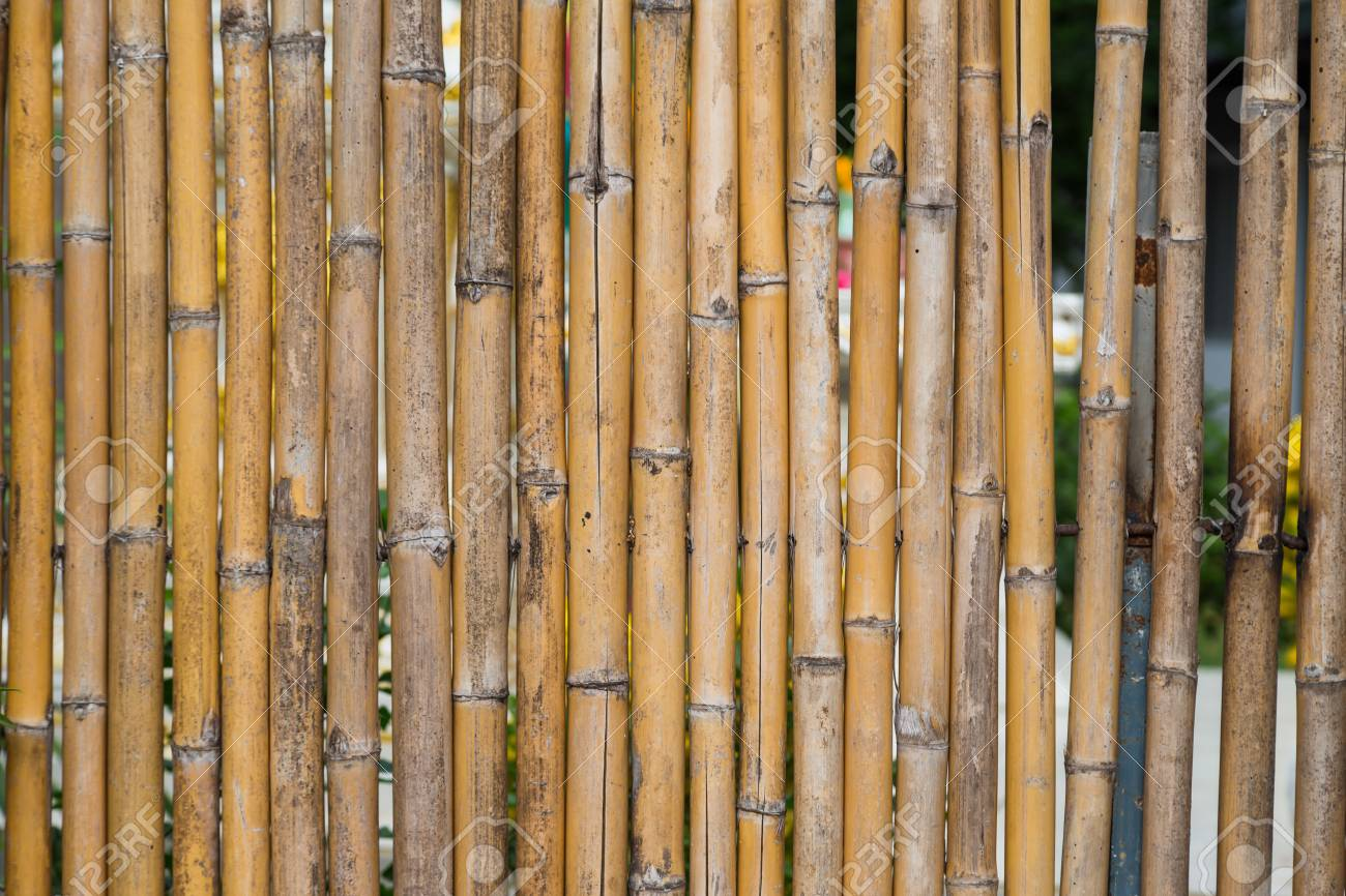 Pattern of bamboo fencing texture background