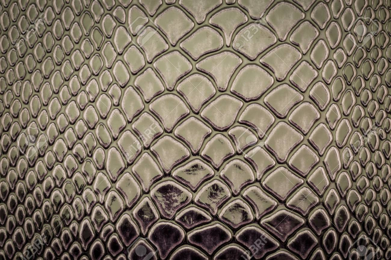 Snake Skin Pattern As A Wallpaper Stock Photo Picture And Royalty Free Image Image 50997179