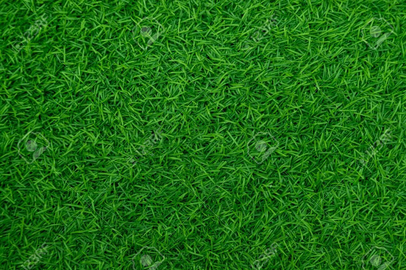 Green artificial grass natural - 130723738