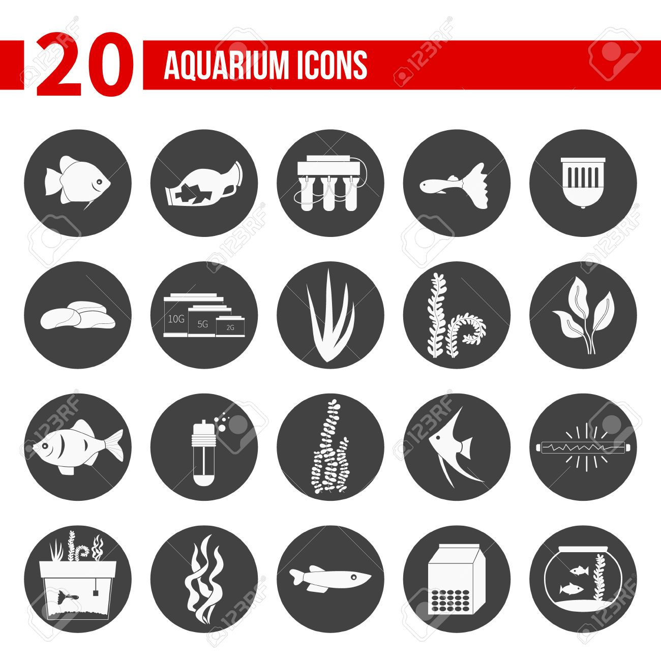 Aquarium fish tank starter kit - Set Of Modern Flat Aquarium Icons Fish Tanks Fish Types Aquarium Plants And