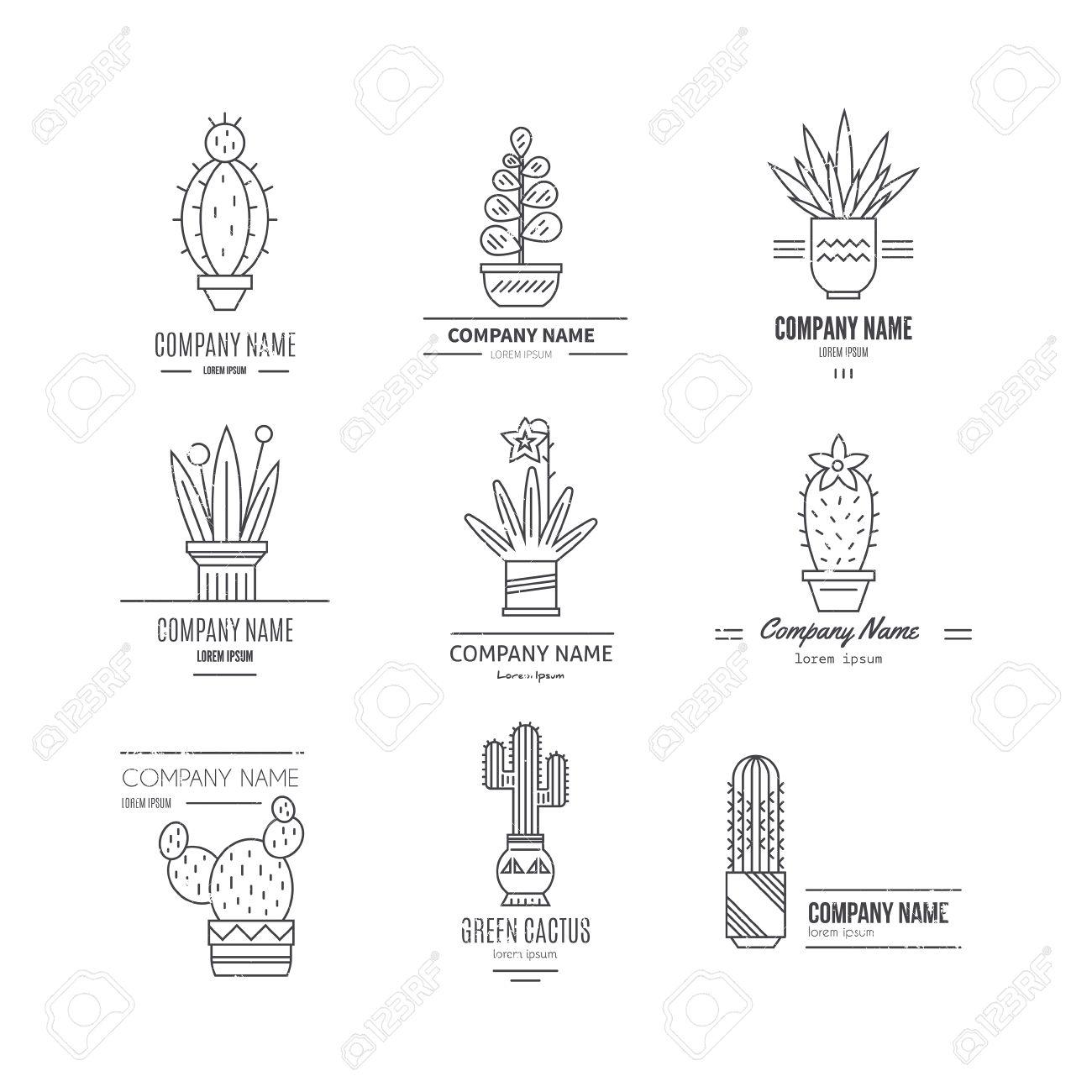 Cactus Plant Diagram - Basic Guide Wiring Diagram •