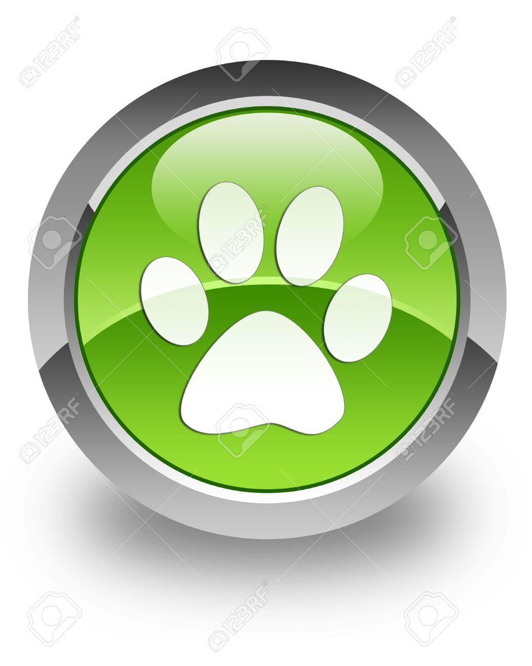 Animal footprint icon on glossy green round button Stock Photo - 13809768