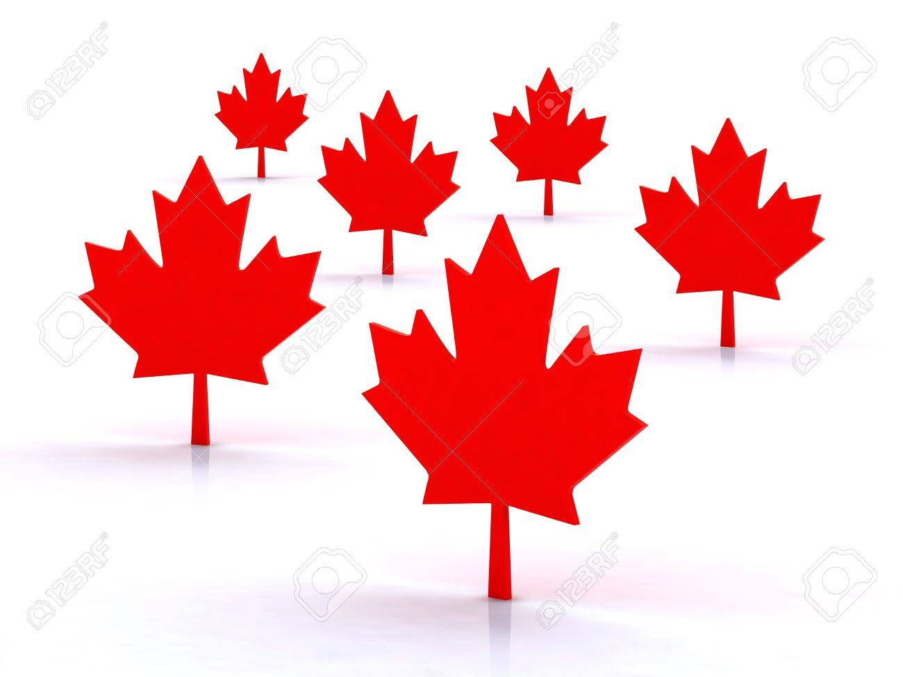 Maple Leafs Canadian Symbol 3d Illustration Stock Photo Picture