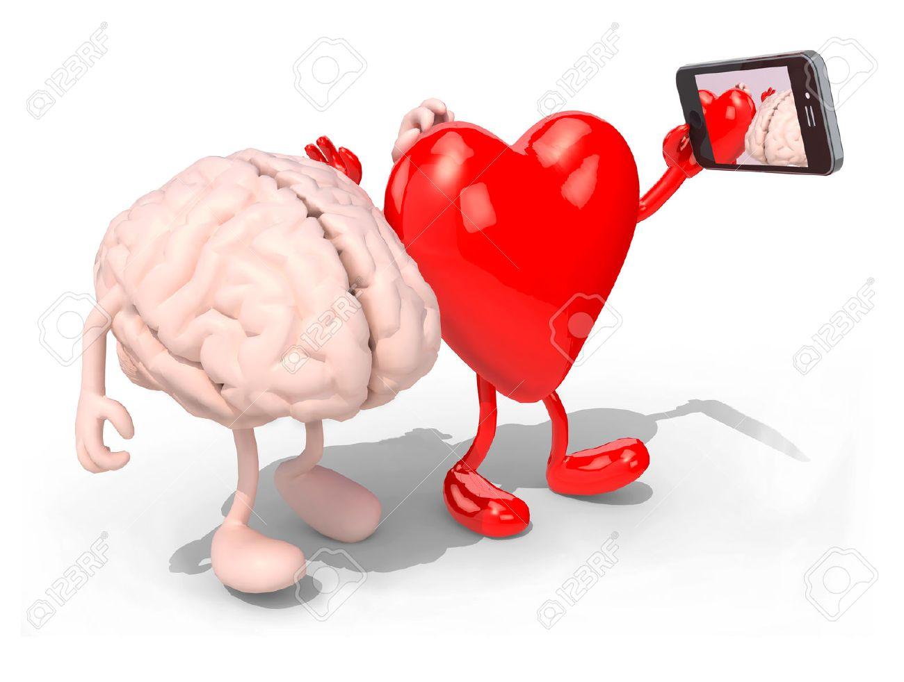 Human Heart Stock Photos Royalty Free Human Heart Images