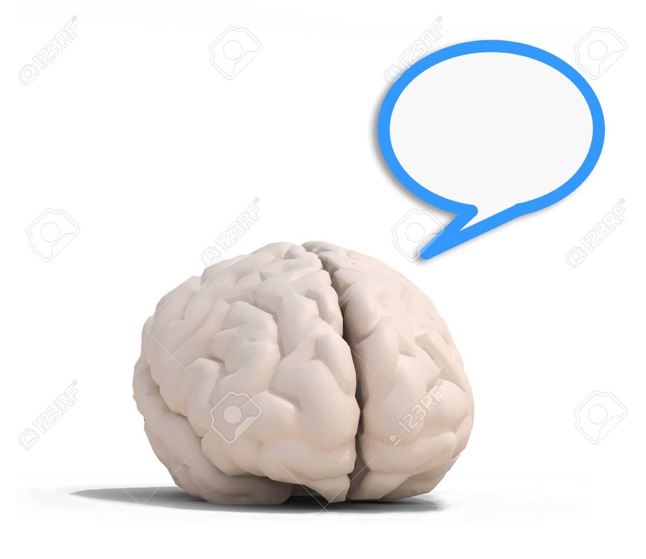 Menschliche Gehirn Mit Blauen Rede Ballon, Isoliert Auf Weiß 3D ...