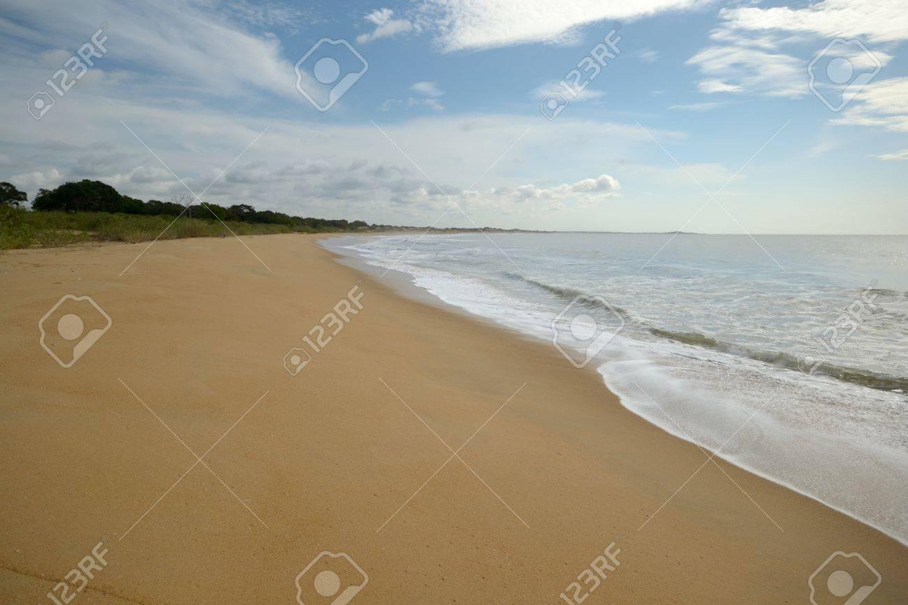 Coastline and desert beach in Yala National Park, south east Sri Lanka Stock Photo - 17424657