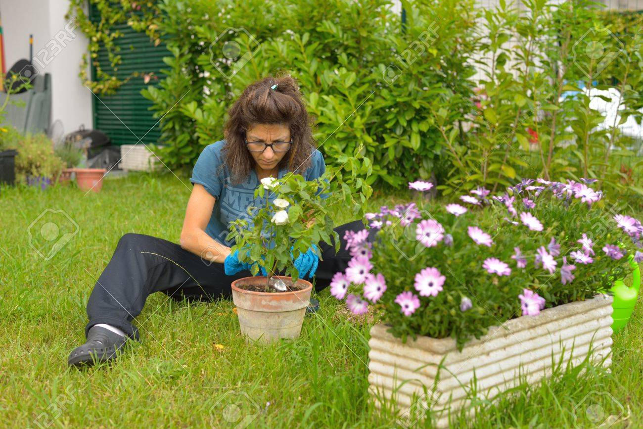 woman taking care of flowers and plants in home garden stock photo 29382297. beautiful ideas. Home Design Ideas