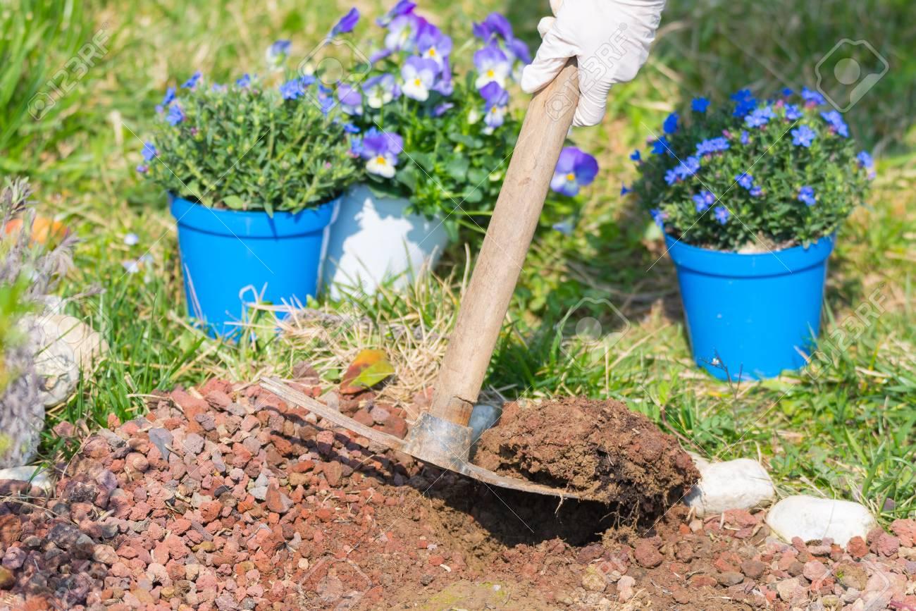 frühling nach hause gartenarbeit, umgraben boden und blumen pflanzen