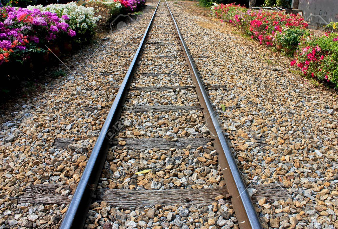 Railway rail in a small railway station, decorated with flowers two side. Stock Photo - 12024045
