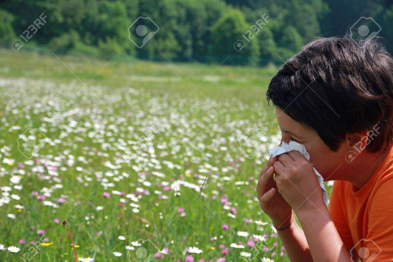 child with an allergy to pollen while you blow your nose with a white handkerchief Stock Photo - 22381780
