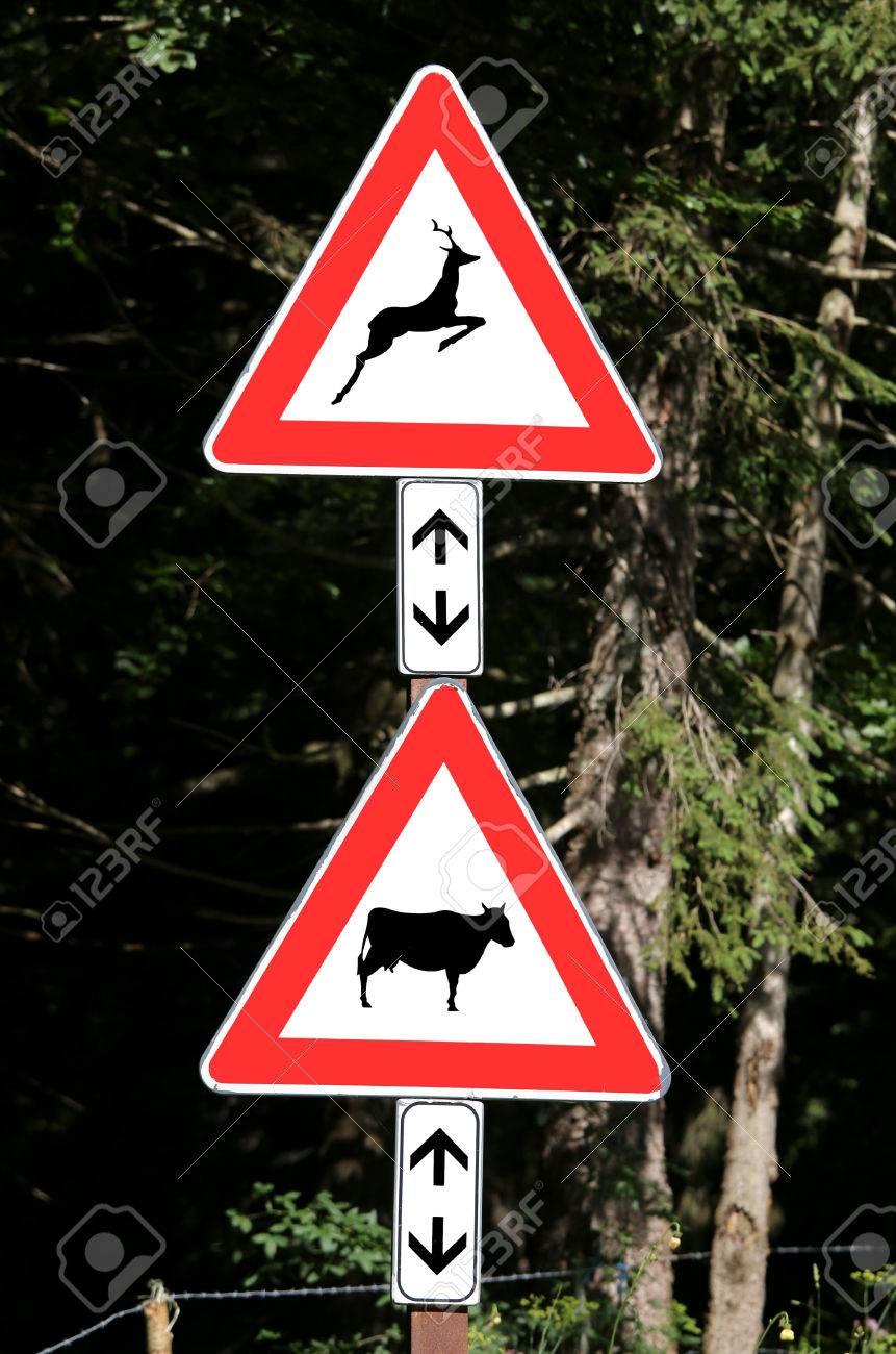 Animals Near Sign