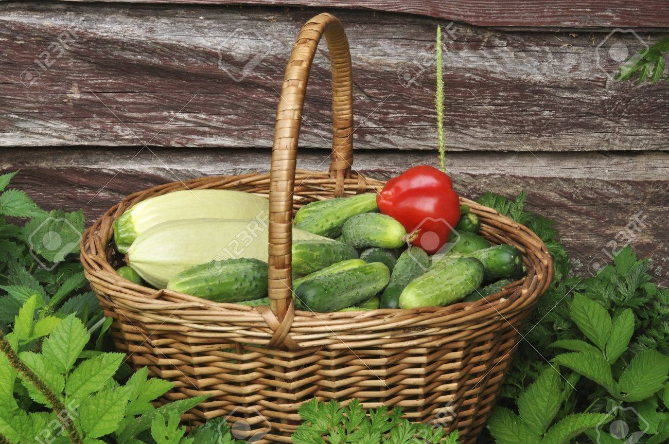 vegetables basket Stock Photo - 10327422