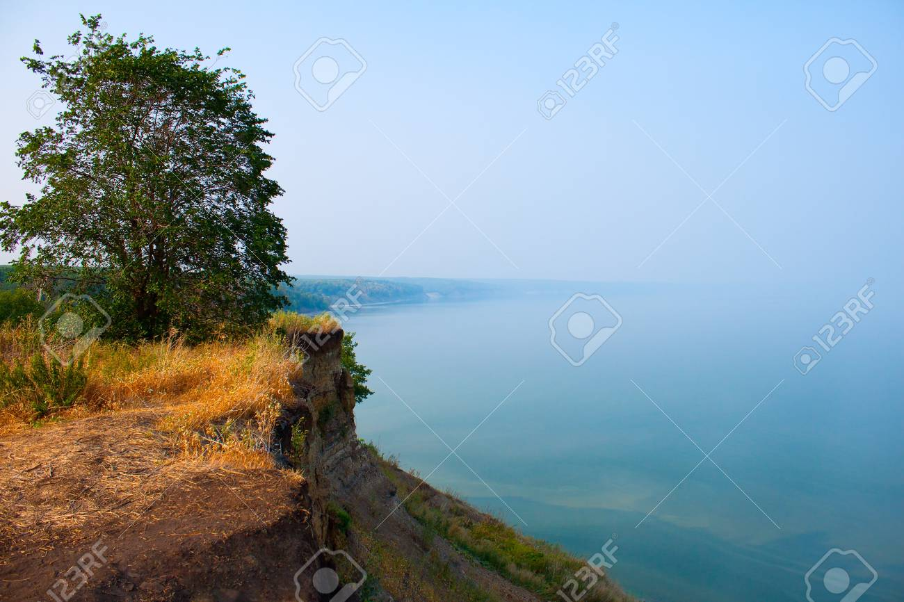 tree on the bank of the foggy river in a sunny day Stock Photo - 13461190