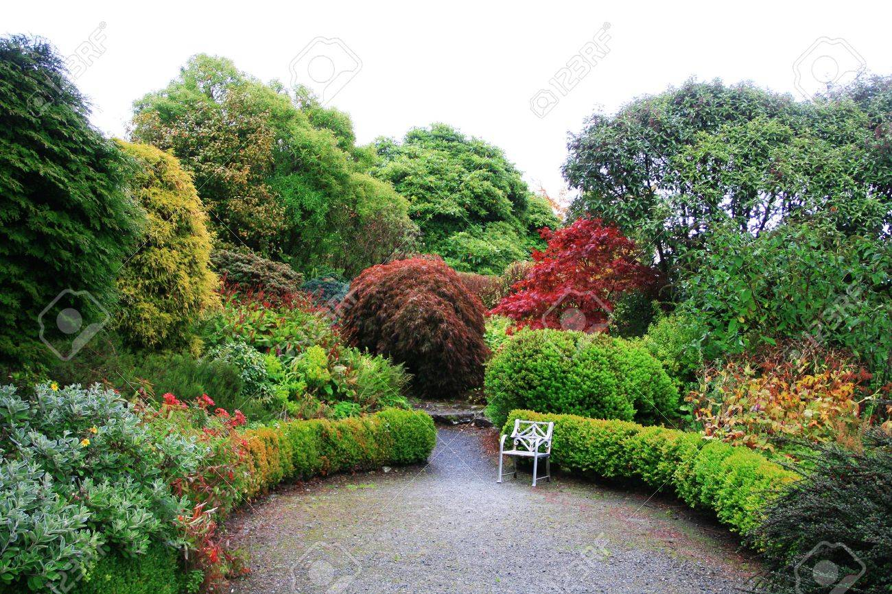 Beautiful Garden With Trees Changing Color In Autumn Focus On ...