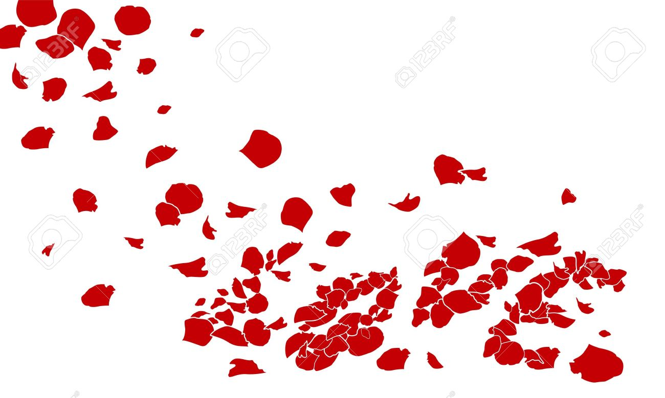 rose of love on white background Stock Vector - 11988930