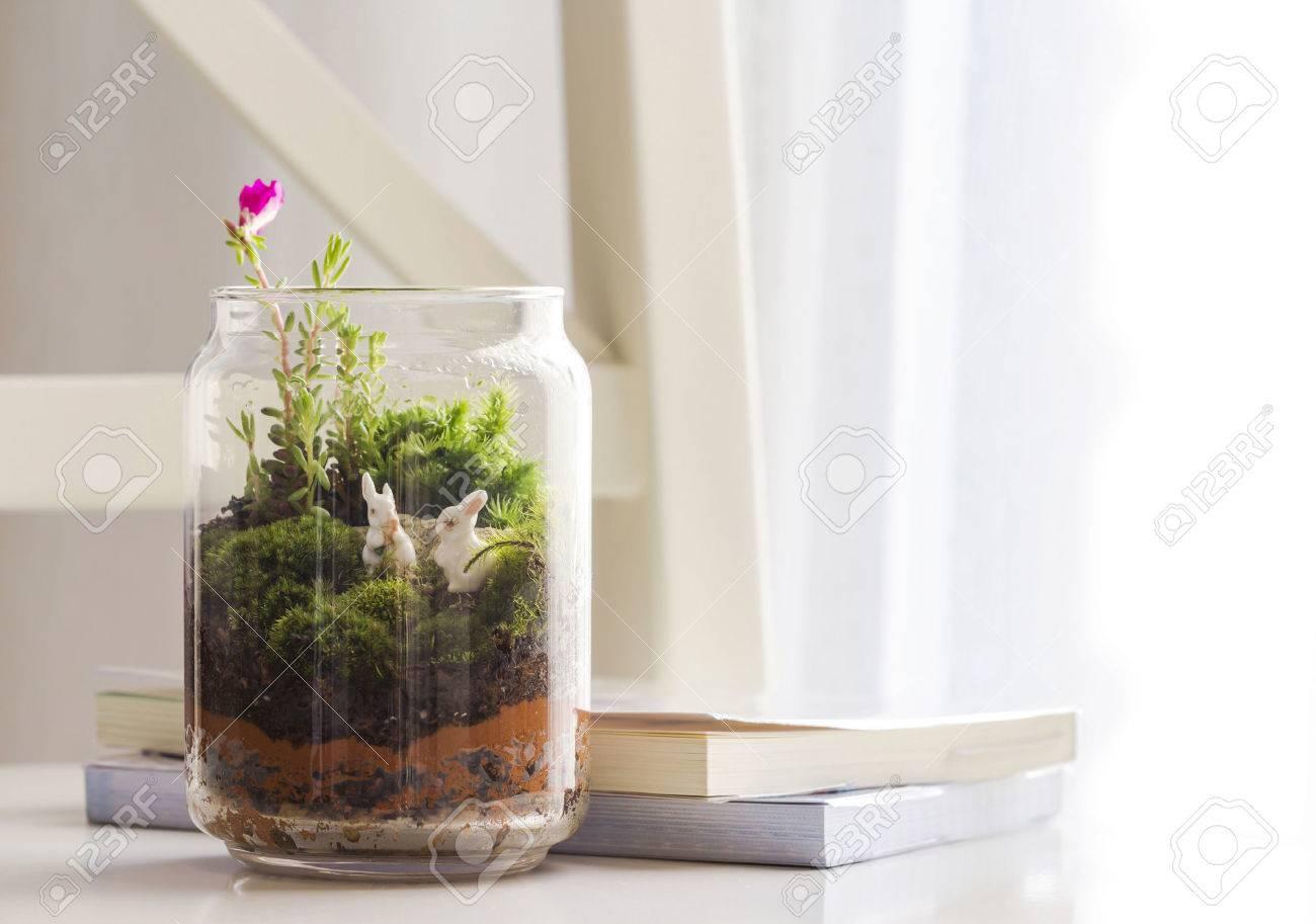 Bottle garden decoration in the living room - 49916301