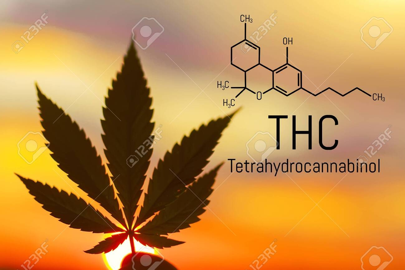 Medical chemical formula hemp THC  Molecular structure marijuana