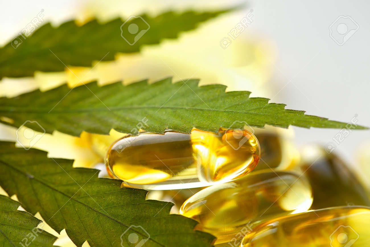 Cannabis CBD capsules are a medical cannabis product with leaves, CBD hemp oil capsules, on white background with copy space - 169732309