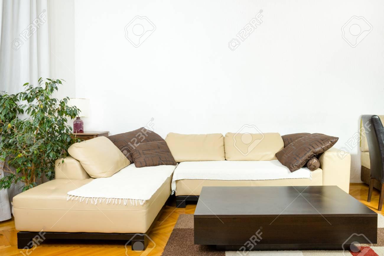 Leere Wohnzimmer Mit Winkelsofa Abendessen Wagen Pflanzen