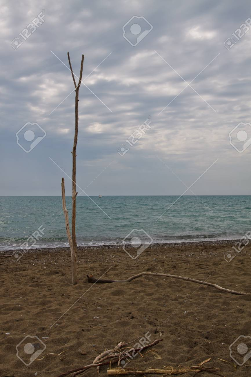 Cecina beach. Tuscany, Italy Stock Photo - 7860908