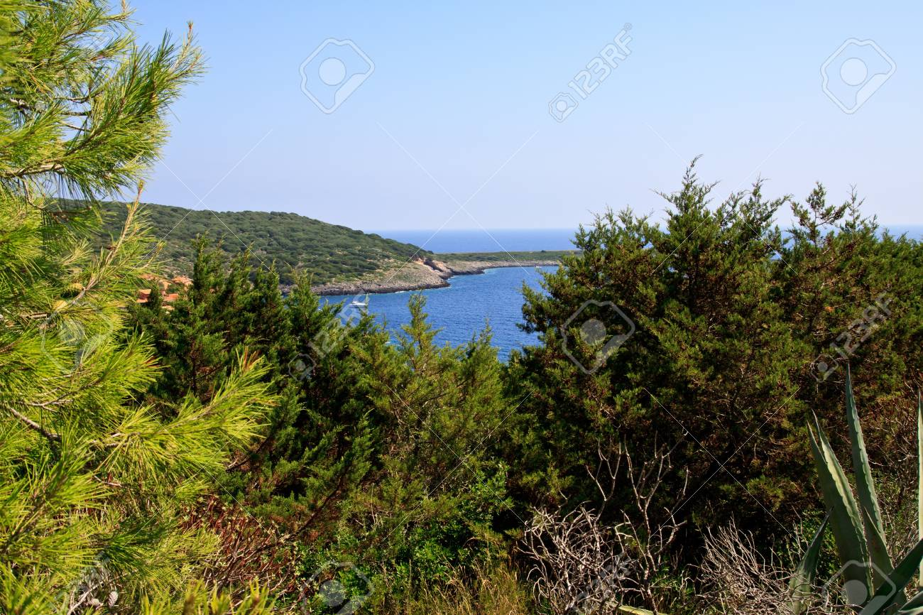Beautiful Bay in the Giglio island Italy Stock Photo - 7824173
