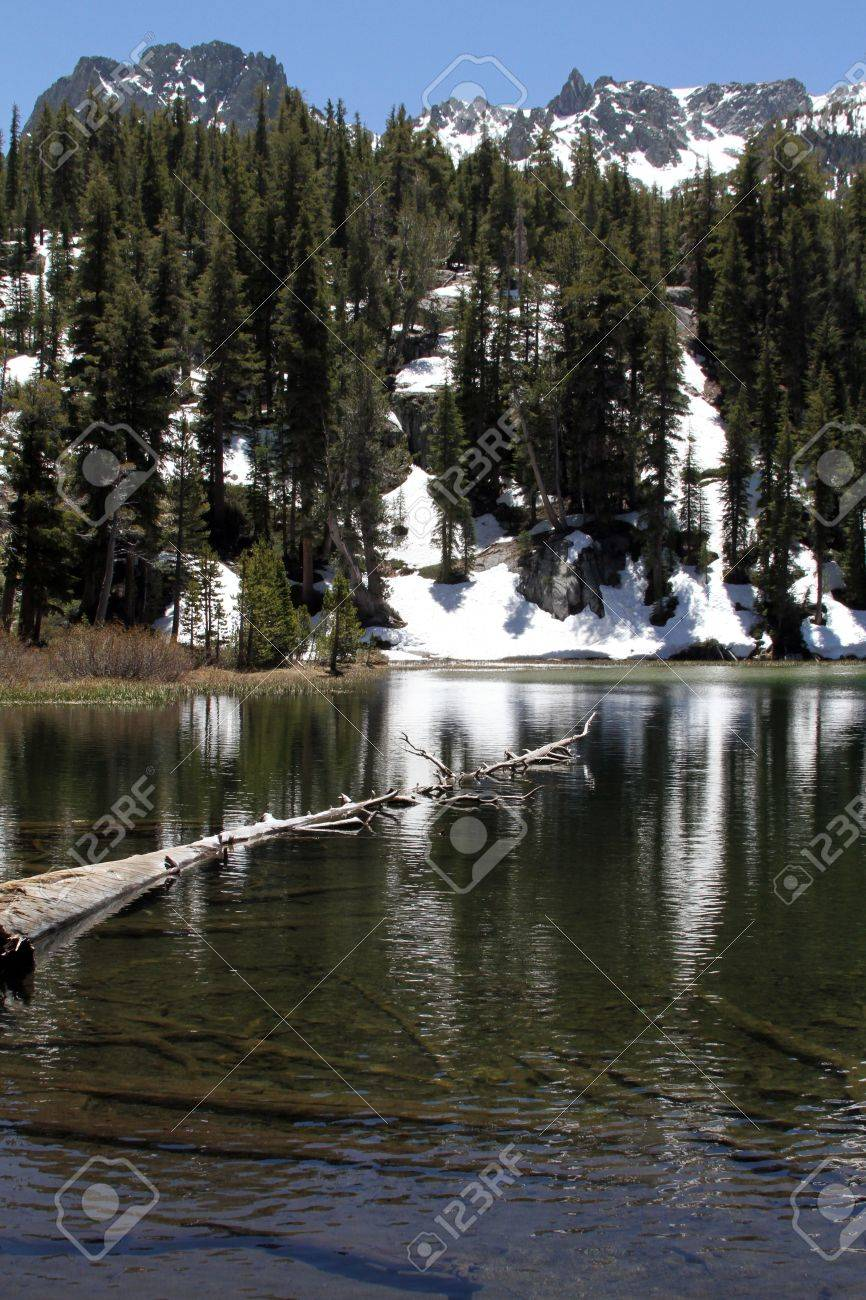emerald lake with tree floating snow capped mountains mammoth