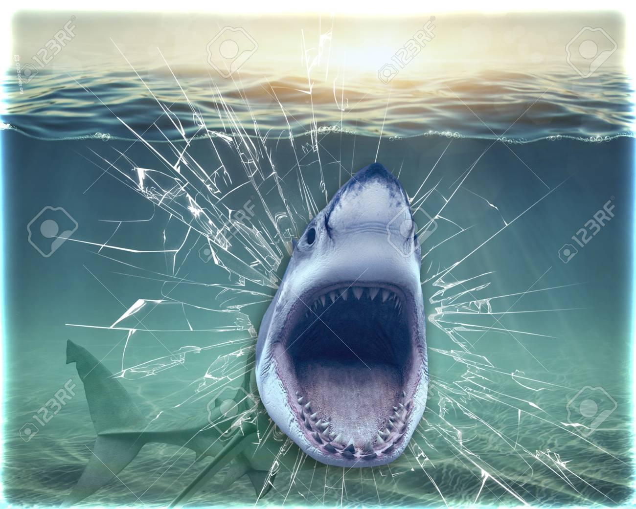 壁から出てくるサメ 壁の壁紙 3 D レンダリング の写真素材 画像