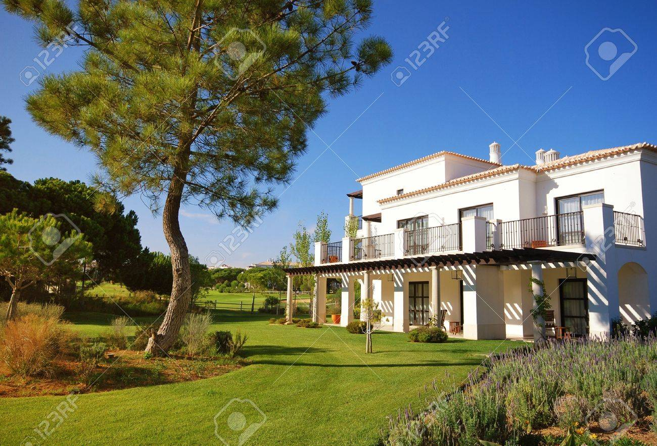 Summer landscape with white holiday villa, lawn and pine with blue sky background(Portugal) Stock Photo - 13824641