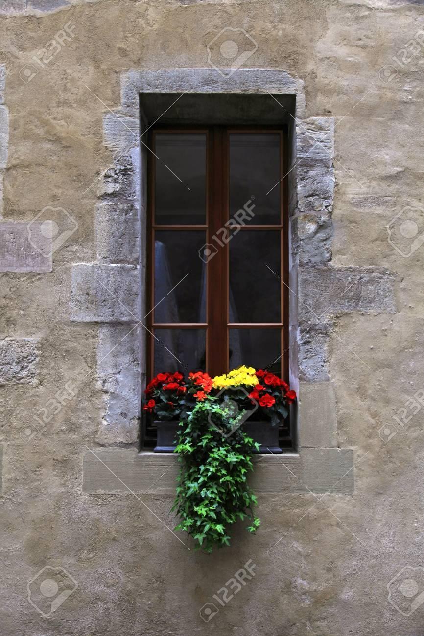 Fenêtre Cru Avec Des Fleurs Et Une Boîte De Fenêtre Dans La Vieille Maison Genève Suisse