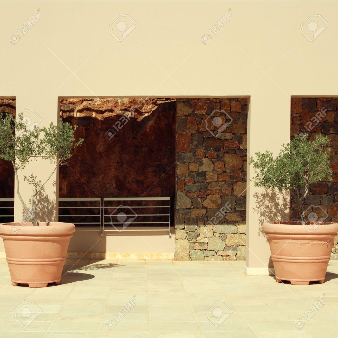 Standard Bild   Zwei Terrakotta Töpfe Mit Olivenbäumen Auf Der Terrasse Aus  Stein Mittelmeer Haus, Griechenland. Platz Getönten Bild