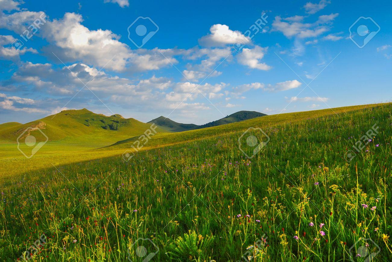 Bashang beautiful grassland in China Stock Photo - 4650661
