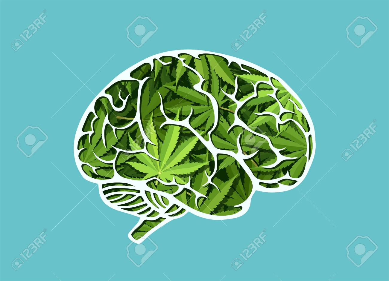 Vector of a human brain made of marijuana leaves - 103964462