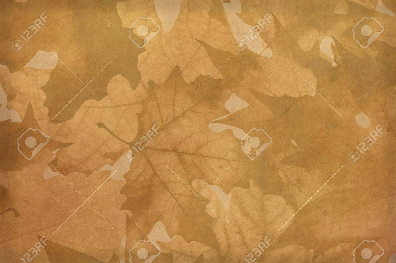autumn background red yellow brown plant Stock Photo - 18164760