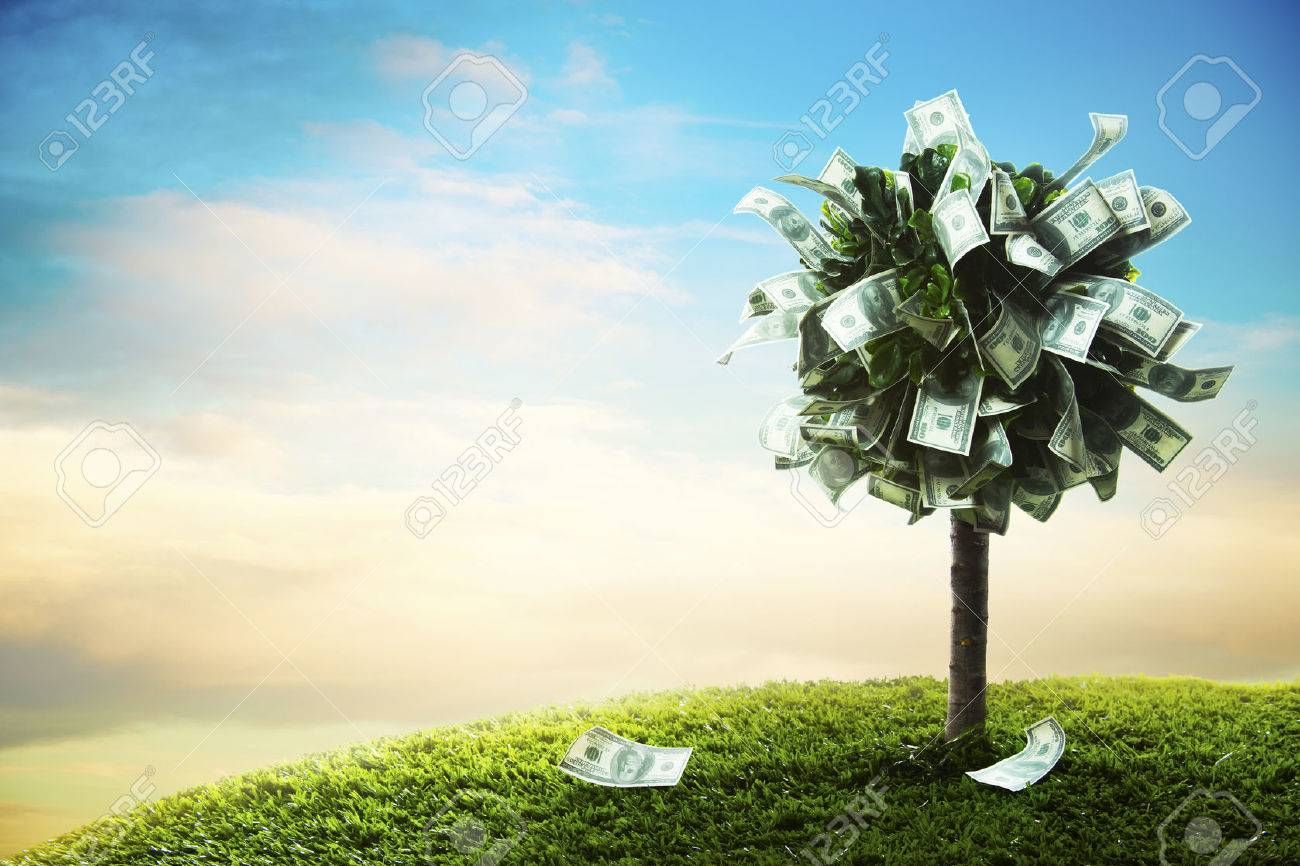photo of tree made of dollars - 28046773