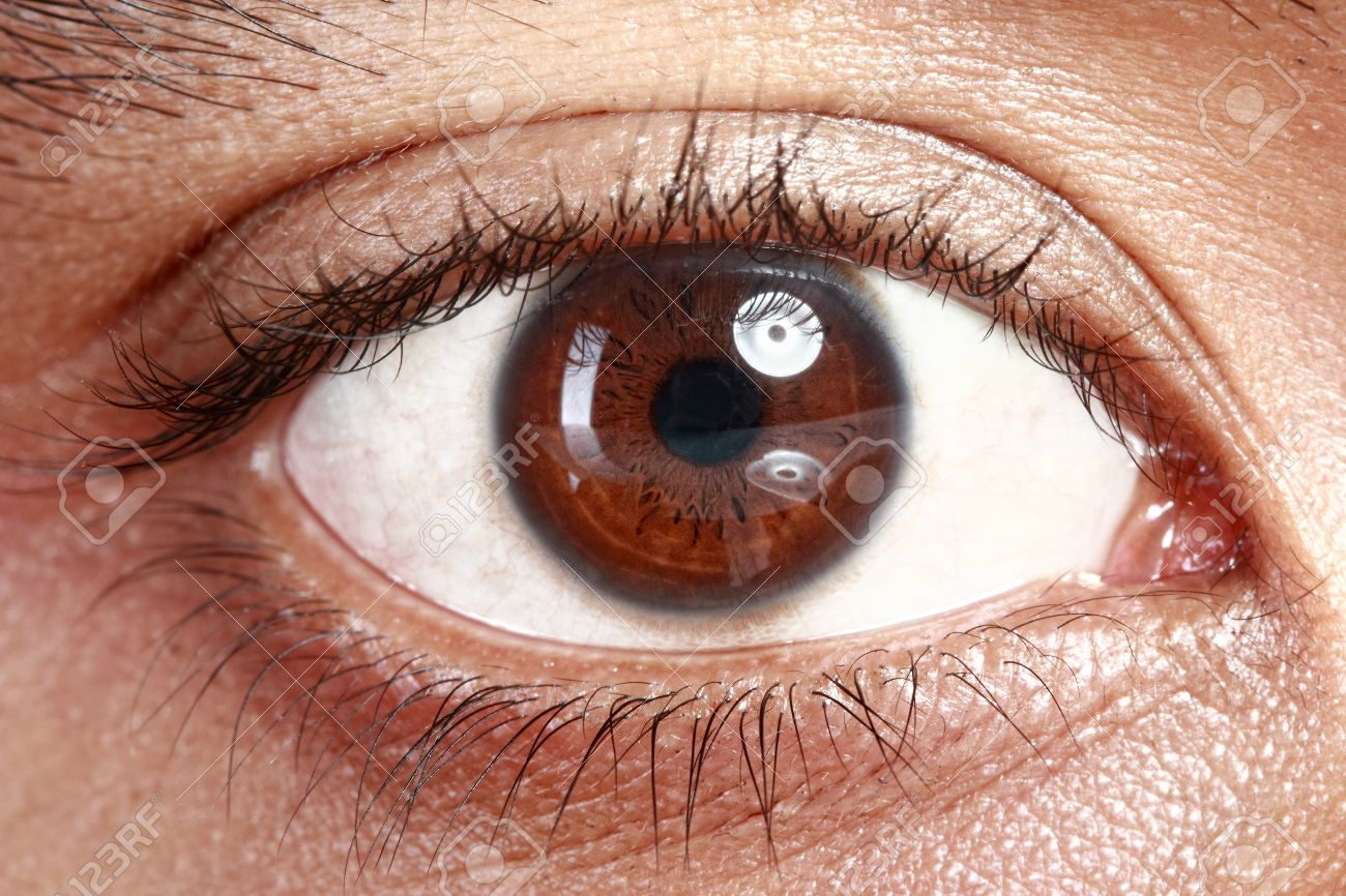 Close Up Picture Of Brown Eyes From A Young Man Stock Photo Picture
