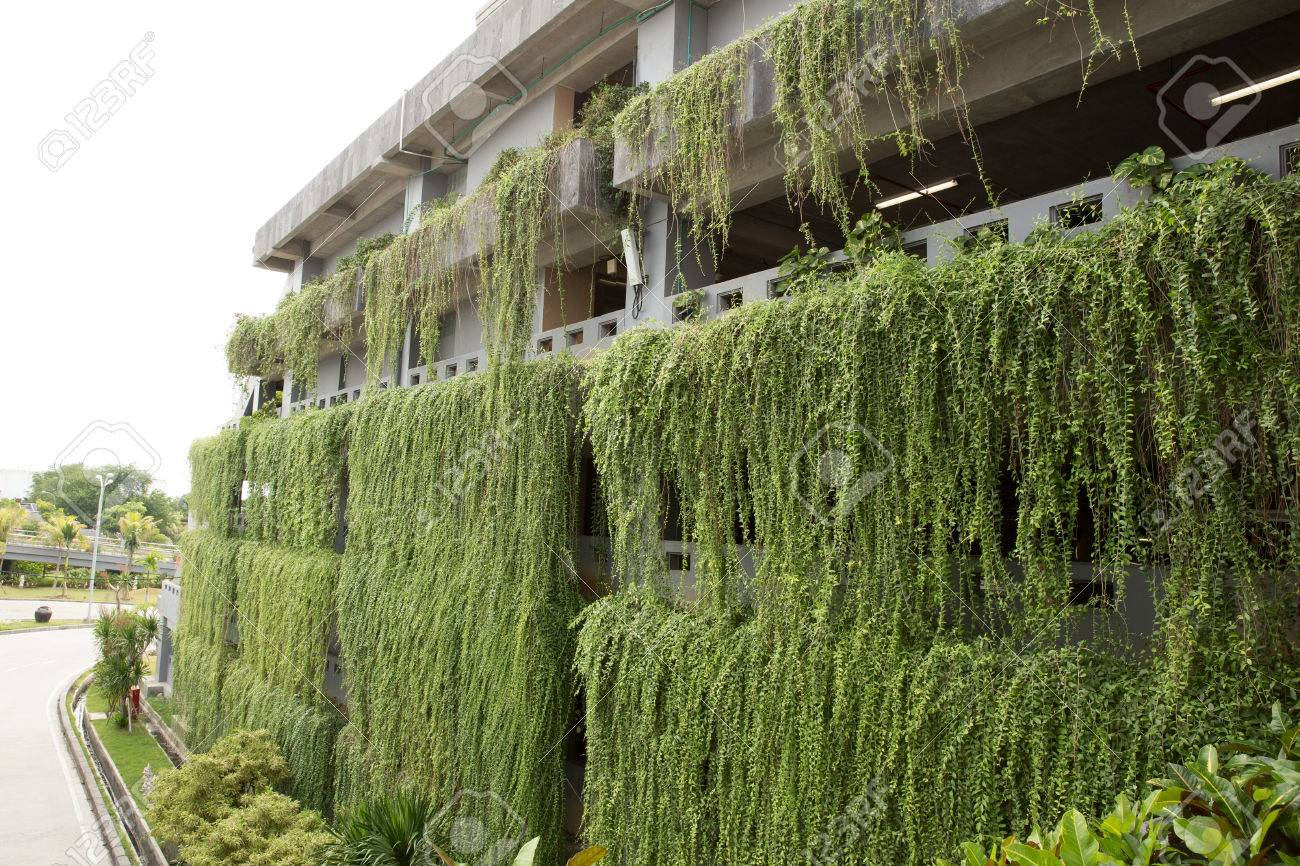 A Portrait Of Decorative Hanging Garden On The More Than One Stories  Building. Green Building