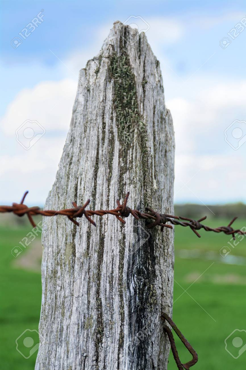 Weathered Wooden Fence Post With Lichen And Rusty Barbed Wire ...