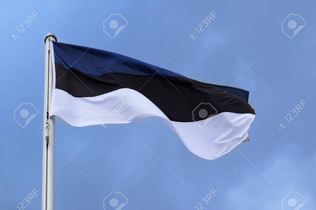 Flag of estonia with stripes in blue black and white national flag of estonia with stripes in blue black and white national symbol or sign biocorpaavc Image collections