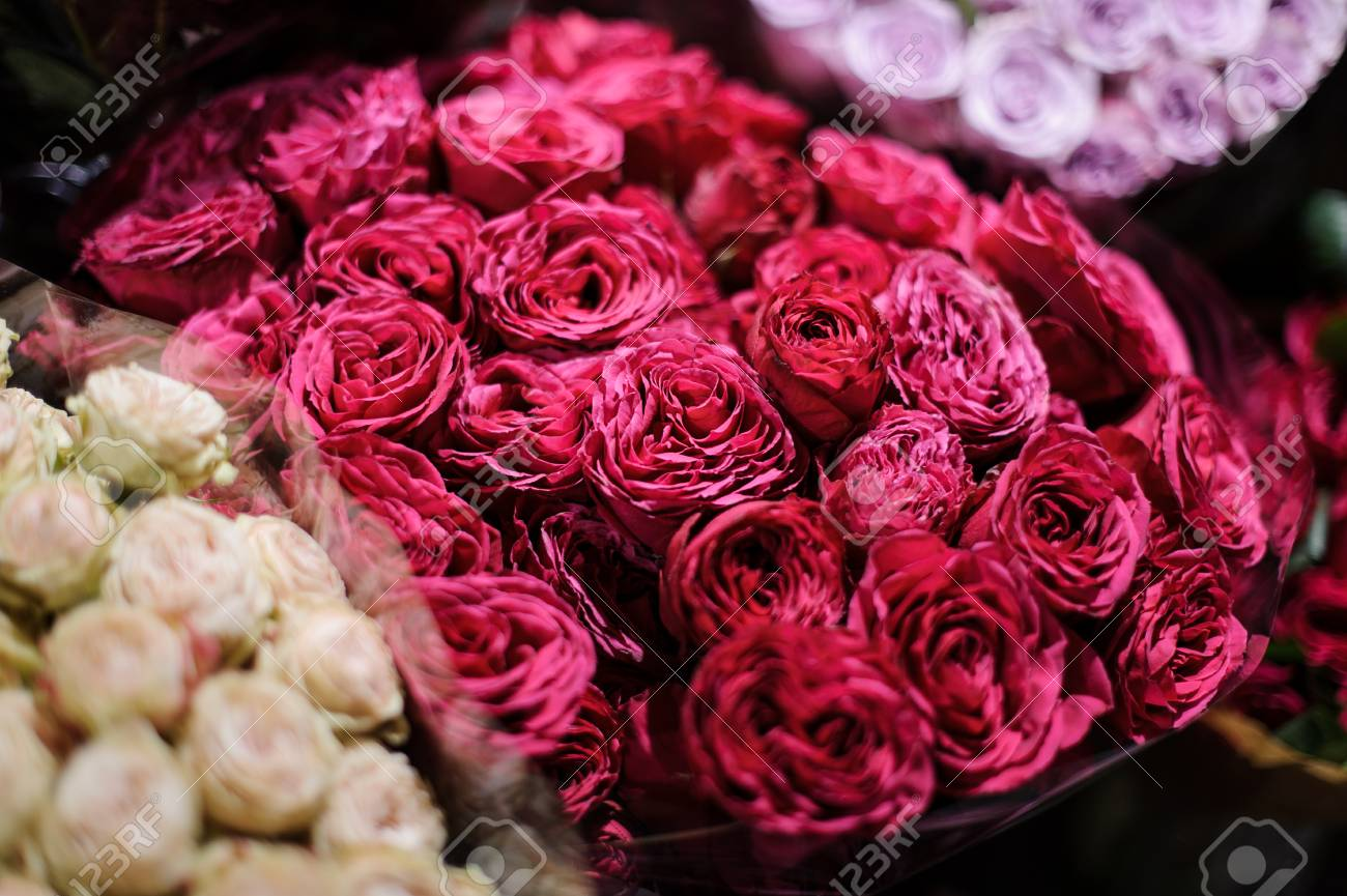 Bouquet Of Flowers Consisting Of Deep Pink Peony Roses Wrapped Stock Photo Picture And Royalty Free Image Image 103519191