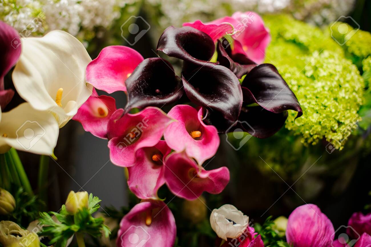 Beautiful Bouquet Of White Pink And Dark Purple Calla Lilies