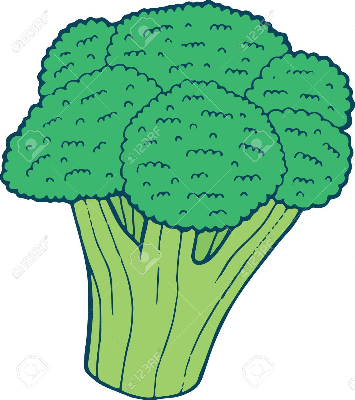 Broccoli Coloring Page Hand Drawn Illustration For Adult And Children Vector Art Book