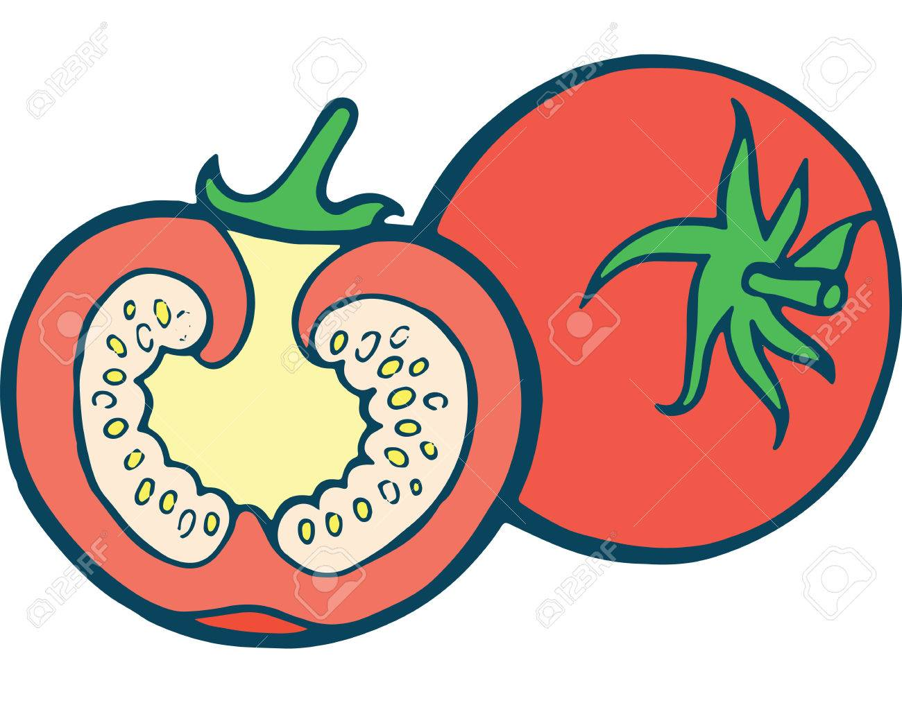 Tomato Coloring Page Hand Drawn Illustration For Adult And Children ...